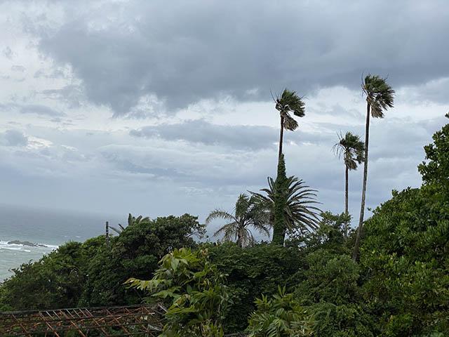 朝の風景強風