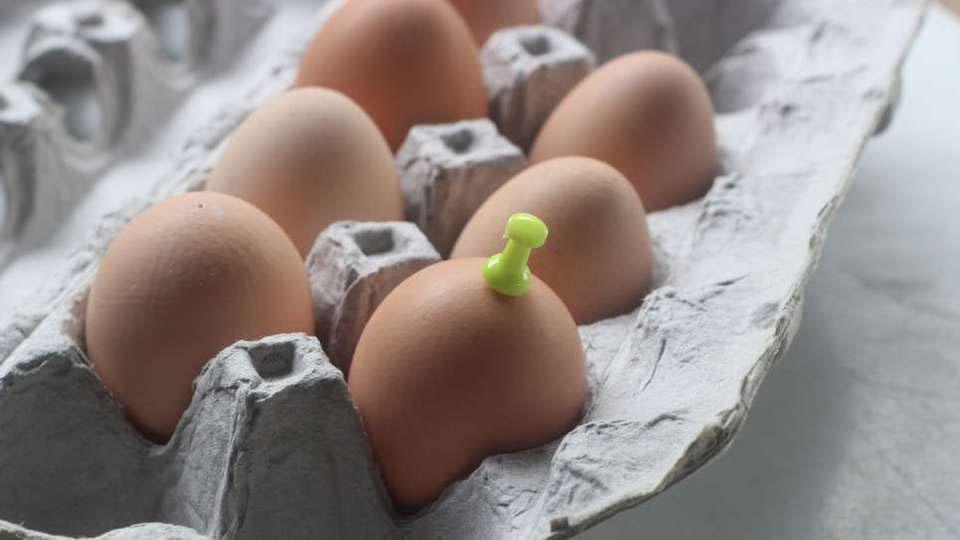 egg1re