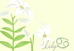 TO‐RUから「ユリ」のあなたへ愛のメッセージ(8月10日~9月9日)