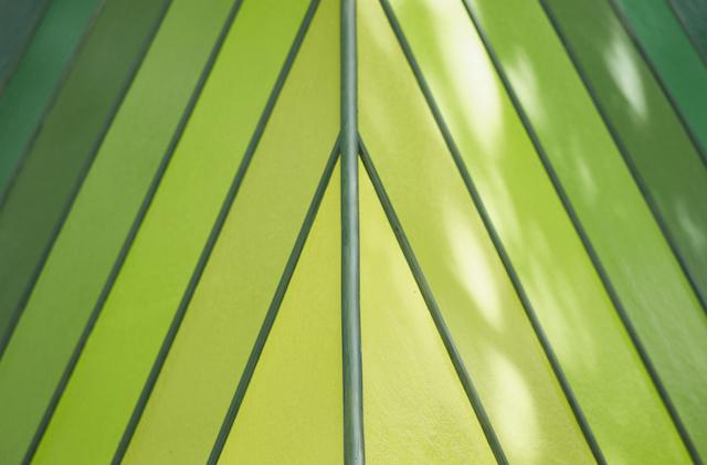 150609Noma Bar_BEV texture top leaf