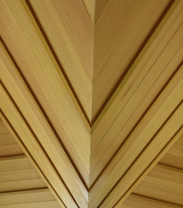 150609_Noma Bar_BEV texture bottom leaf