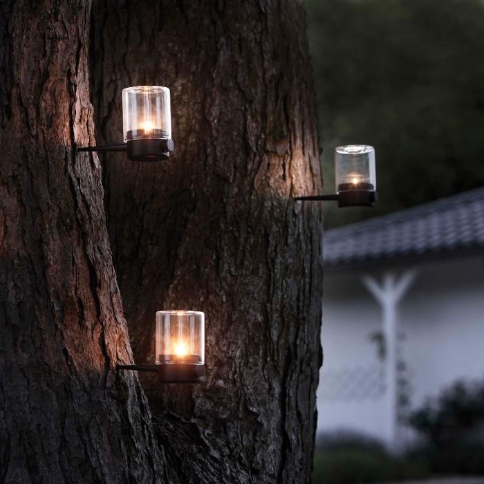 木が私たちをやさしく照らしてくれるよ