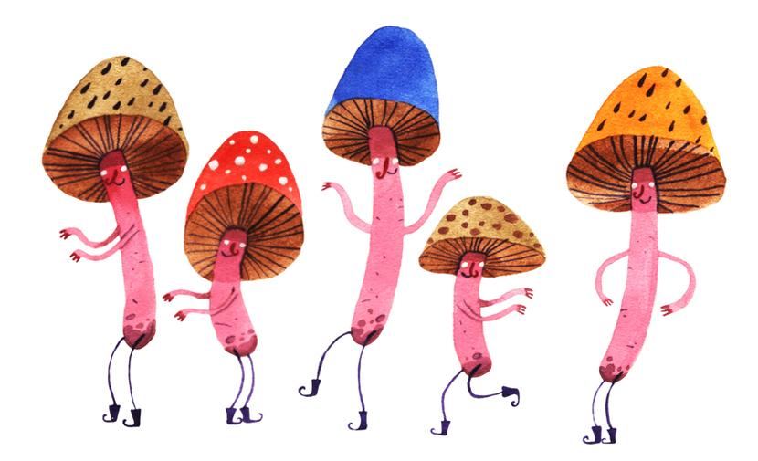 mushroom3_284985053
