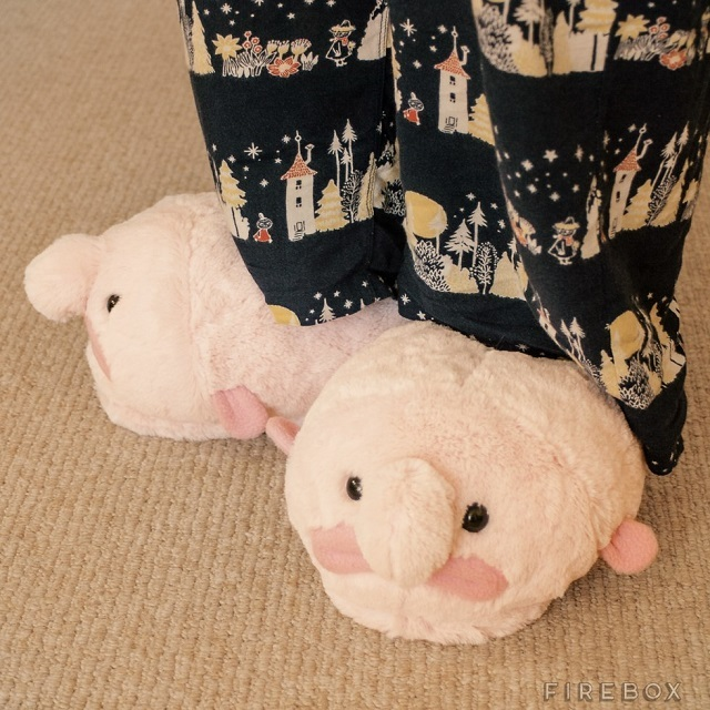 0225slippers05