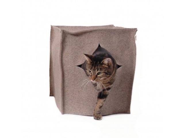 160304_catstyle5