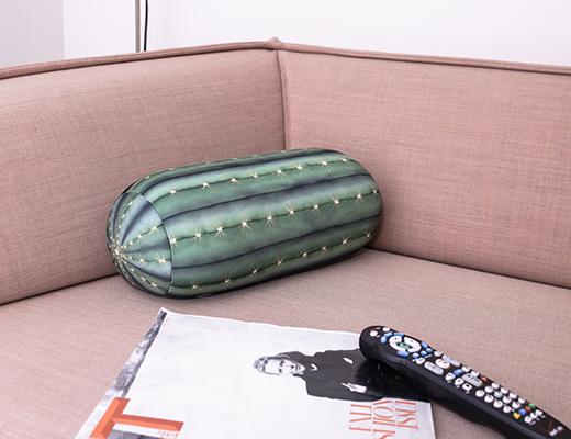 TT34-Cactus Pillow-0278