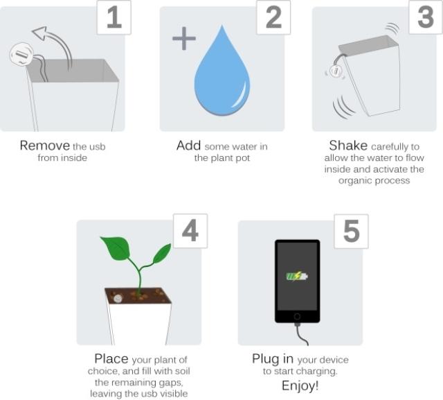 植物グリーン発電Bioo4