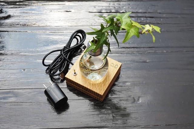 電球を花瓶に