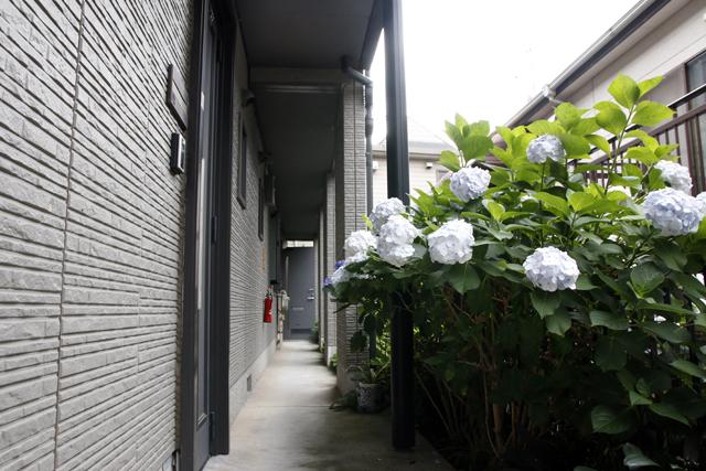 レコードとDJとウーパールーパーを愛して渋谷で暮らす部屋の玄関アプローチ