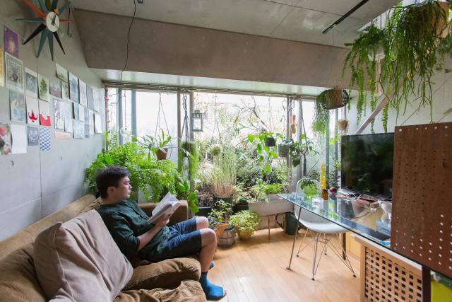 160725roomie_plants16