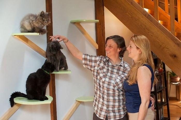 ネコだって上質に暮らしたいんじゃー! というニーズに完璧に応えた住宅アイディア。あらゆるところにネコをワクワクさせるような構造が見つかりますが、実はもう一点注目すべき点が。それは人間の暮らしへの配慮です。あちこちに走っているレールも、じつは家の梁に沿っていたりと、スペースを取らず、見た目も乱しません。愛ネコ家ならば誰しも憧れるような家ではないでしょうか。