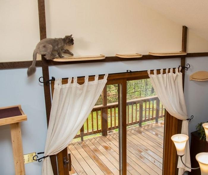 アメリカにクラス猫好きの2人組が愛ネコの為に改造した家の紹介。手がけたのは米国でハンドメイド・キャットタワーを販売するMountain PET Productsのレベッカさん。人間の生活の邪魔にならないスペースにキャットタワーとキャットウォークを作りました3