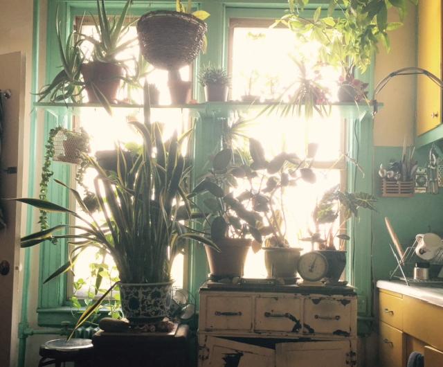 アメリカ・NY Brooklyn Williamsburg(ウィリアムズバーグ)で、アンティークの思い出の品に囲まれておしゃれに暮らす夫婦_12