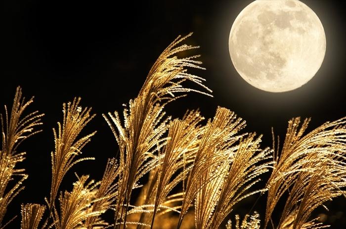 古くは奈良時代から日本人に愛されてきた「中秋の名月」。現在の暦では今年の9月15日が「中秋の名月」とされ、その二日後の9月17日(土)は満月です。そこで、「月見酒」を楽しむための秋と相性ピッタリな酒器をご紹介致します。top