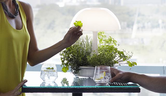 植物が育ちやすい光を与えるボタニカルな照明器具「Ambienta Table Lamp」をご紹介。部屋の照明とは別に、植物育成用のLEDライトは3段階切り替えることができ、日当たりの悪いキッチンでもハーブなどの植物を育てやすい仕様です。場所を選びません。