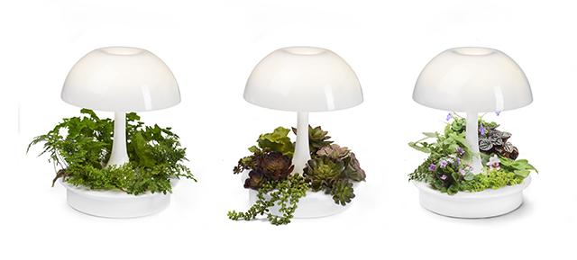 植物が育ちやすい光を与えるボタニカルな照明器具「Ambienta Table Lamp」をご紹介。部屋の照明とは別に、植物育成用のLEDライトは3段階切り替えることができ、日当たりの悪いキッチンでもハーブなどの植物を育てやすい仕様です。多肉植物、熱帯の観葉植物、シダ植物と3種類のキットも同時に発売しています。