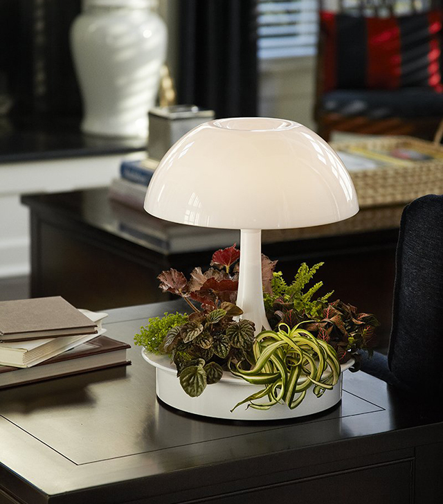 植物が育ちやすい光を与えるボタニカルな照明器具「Ambienta Table Lamp」をご紹介。部屋の照明とは別に、植物育成用のLEDライトは3段階切り替えることができ、日当たりの悪いキッチンでもハーブなどの植物を育てやすい仕様です。オフィスでも大丈夫。