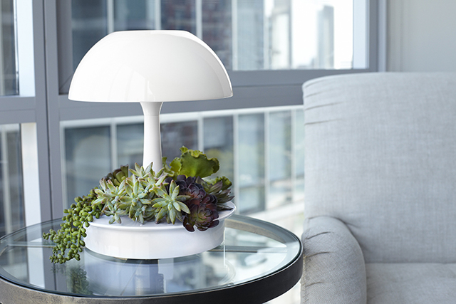 植物が育ちやすい光を与えるボタニカルな照明器具「Ambienta Table Lamp」をご紹介。部屋の照明とは別に、植物育成用のLEDライトは3段階切り替えることができ、日当たりの悪いキッチンでもハーブなどの植物を育てやすい仕様です。スマートなデザイン。