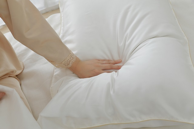 枕をはじめとする寝具・睡眠グッズの企画開発などを行う「まくら」が発売する「極上まくら」。日本の枕史上、最高値となる8万円(税別)の商品です!ポーランド産シルバーグースダウンなど、ケースから素材まで、あらゆる部分に最高級の素材を使用しています。羽毛の使用量は驚きです。