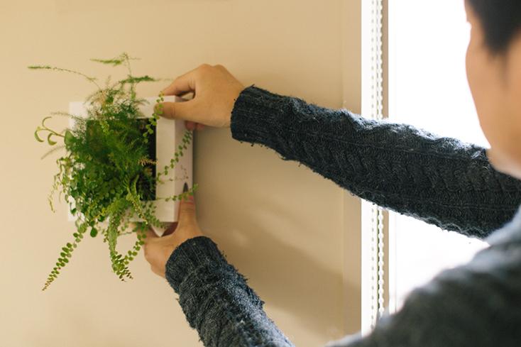 無印の壁にかけられる観葉植物