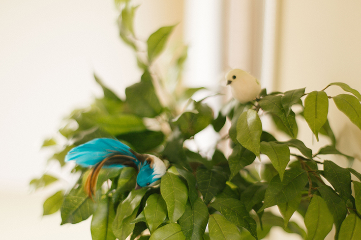 かわいい鳥の飾り
