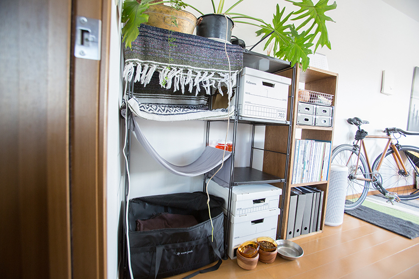 ROOMIEのお宅訪問連載「みんなの部屋」は早くもvol.50。個性的な部屋の中でベストな空間を編集部の独断と偏見で選んでみた。リビングやダイニング、趣味部屋、仕事部屋、DIY、男子部屋、ペット、植物などを取り上げる。4