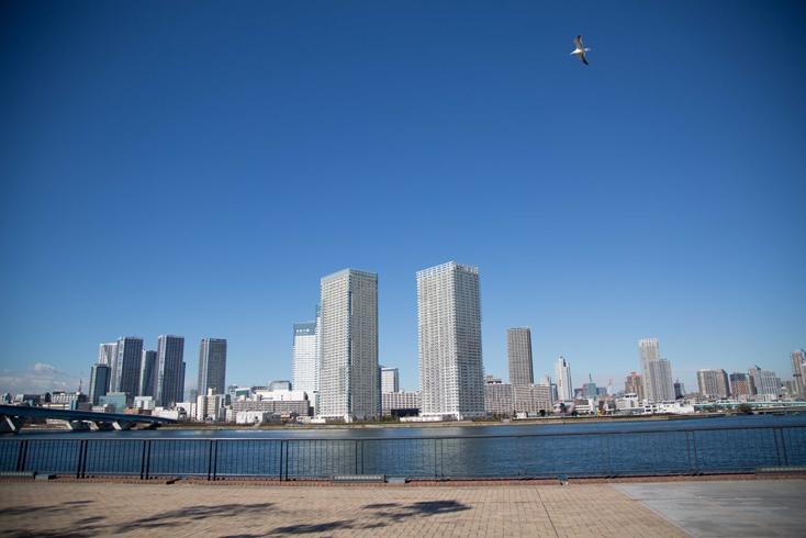 東京湾を望む豊洲にある「スマートハウジング 豊洲まちなみ公園」。約6000坪の敷地にはスマートハウスをテーマとした各社のモデルハウスが集っている。スマートハウスとは、太陽光発電システムや蓄電池などのエネルギー機器、家電、住宅設備機器などをコントロールし、エネルギーマネジメントを行うことで、CO2排出の削減を実現する省エネ住宅のこと。未来の暮らしを体感できるとあって、期待に胸が高鳴る。