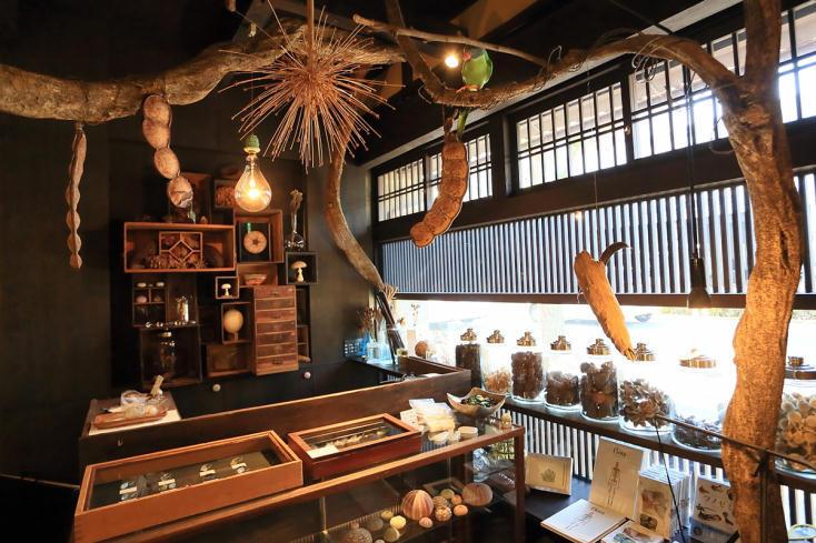 京都にある、昭和初期の京町家を改装した1日1組の宿「ウサギノネドコ」を紹介