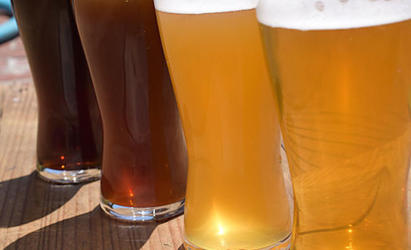 ビールの出来を左右する酵母は野生酵母のみで醸造したクラフトビール