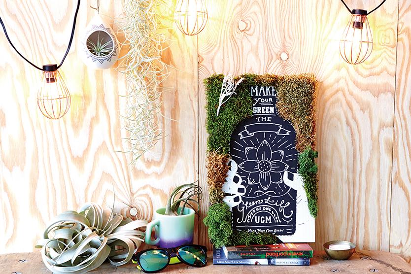 植物アートが作れるGREEN ART KIT