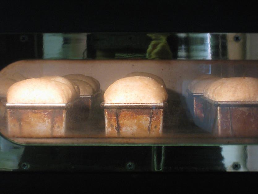 小麦粉、塩、酵母、水というシンプルな材料だけで、驚くほどのおいしさにでき上がるのだそう