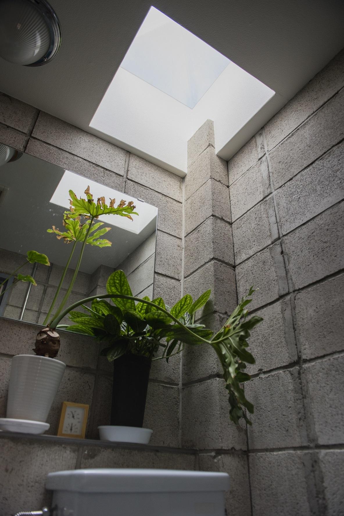 トイレの色が、白ではなく水色なところもポイント