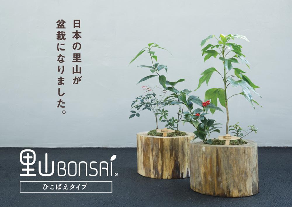 里山-BONSAI