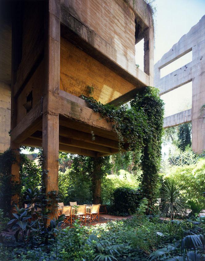 植物で建物が囲まれるようにデザイン
