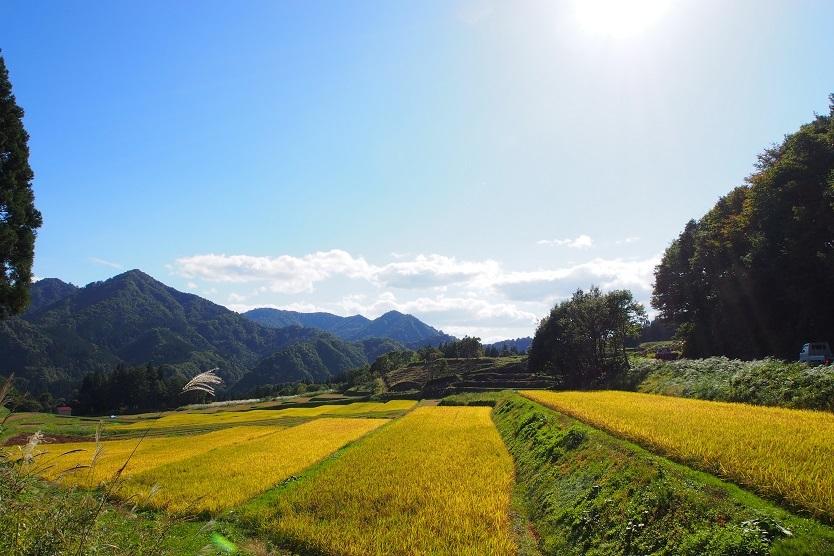 米は秋田県内陸北部に位置する北秋田市阿仁地区で栽培されている「あきたこまち」を使用