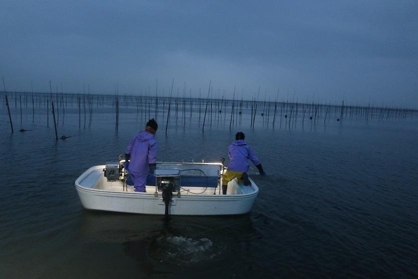 佐賀県産の有明海苔を使用