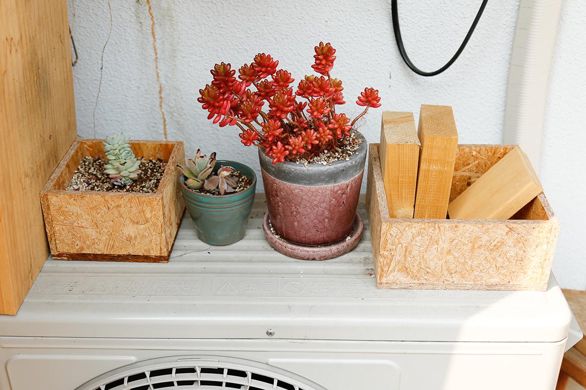 多肉植物と、DIYしたプランツ