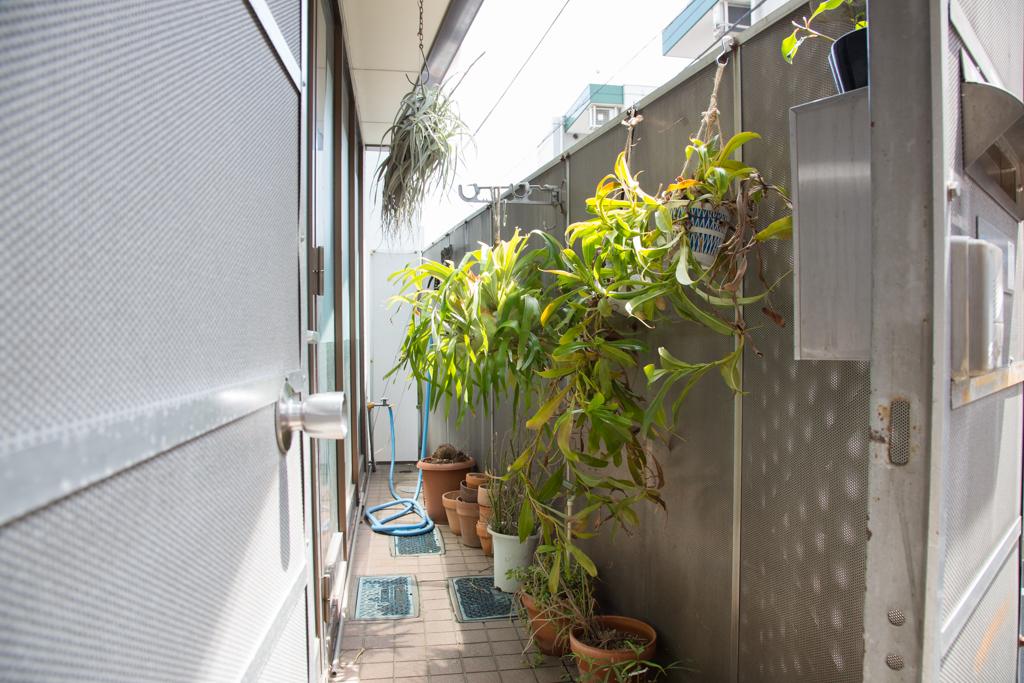 柵に囲まれた玄関横のテラスのような部分は、植物が茂る癒しのスペース