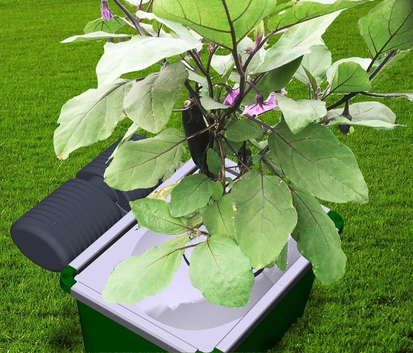 自動的に生育環境を構成してくれるので、文字通りほったらかしにしていても驚くほど野菜が育つ、世界初のシステムとなっている