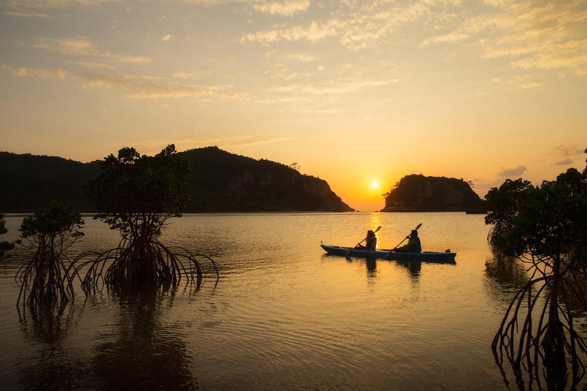 いざ、西表島へ。ナショナルジオグラフィックの世界観が体験できるツアー