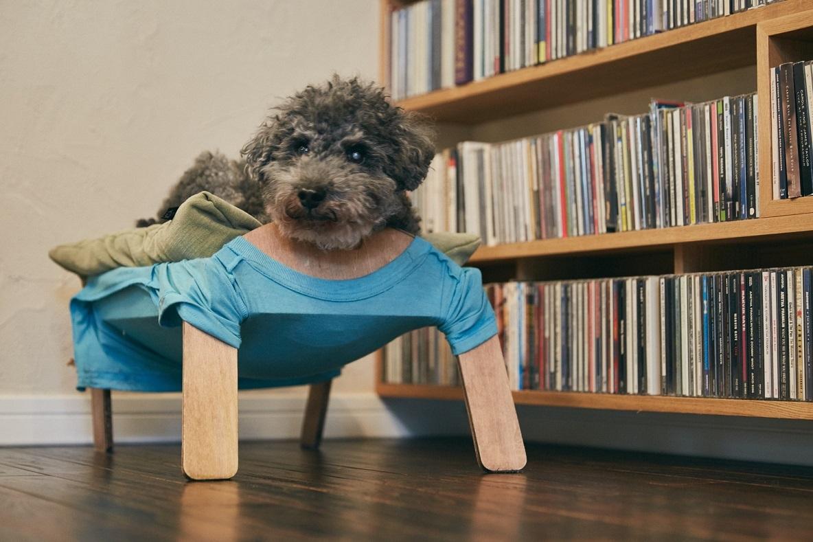 DIYできる犬用ベッドwanmock