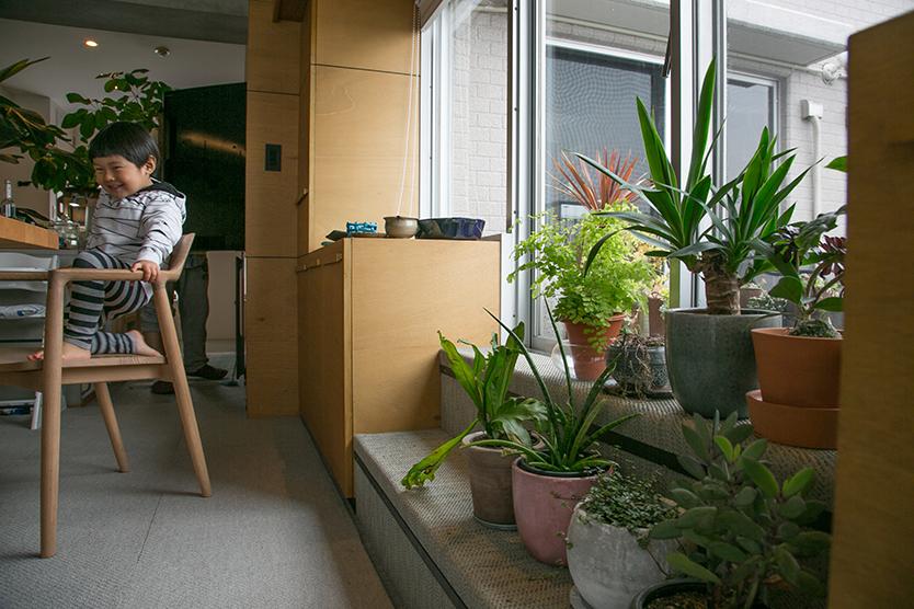植物をたくさん飾る、ルコニーに上がる階段