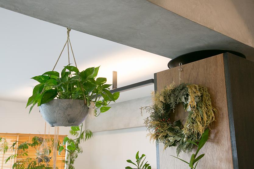 家に植物を置く