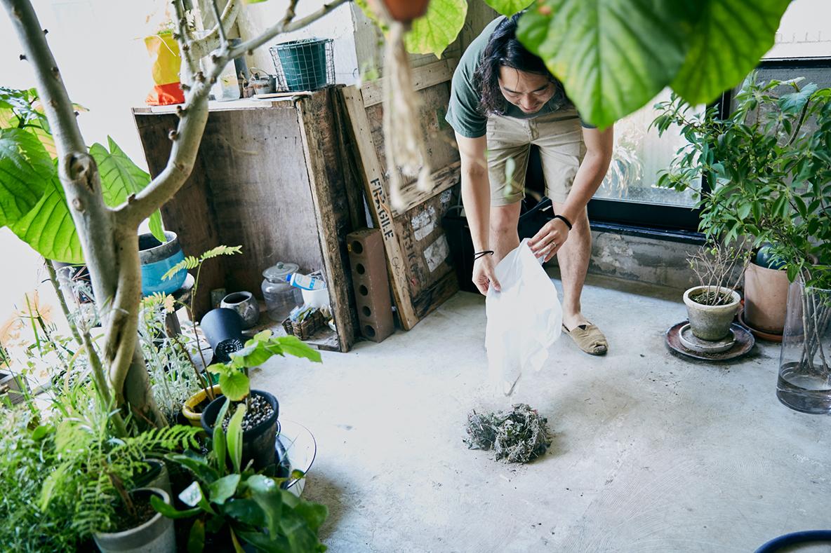 『ルンバ』で掃除した3日分のゴミの量