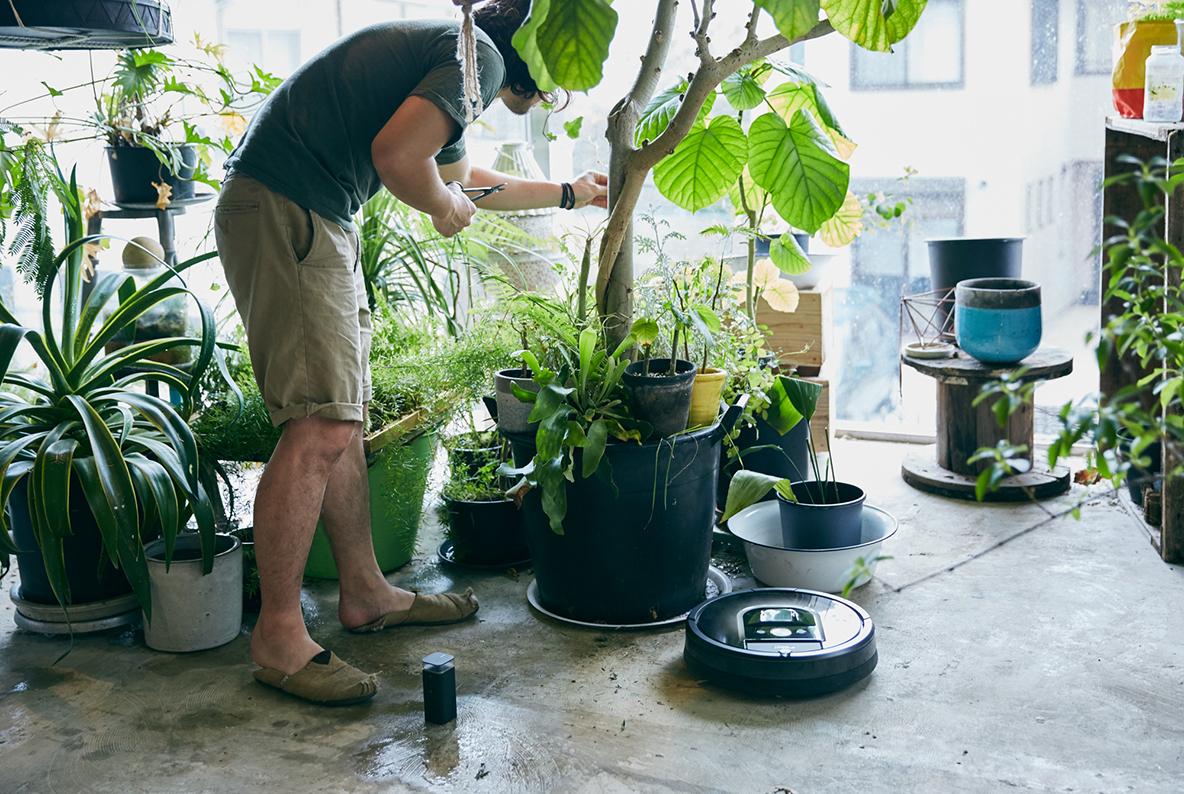 たくさんの植物に囲まれた暮らし