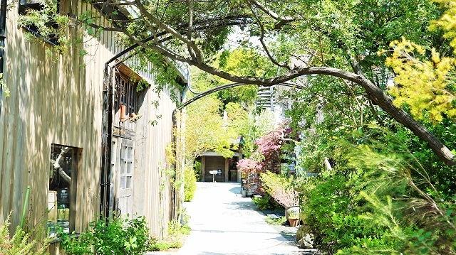 入口は一見欧州の庭園のようですが、実は敷地内の建物ほとんどが古い日本建築物を移築して作り上げられているという、ちょっと独特の空間