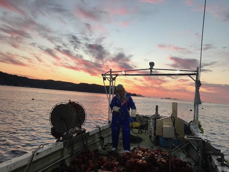 FISHERMAN CALLは漁師がモーニングコールをかけてくれるという、目覚ましサービス