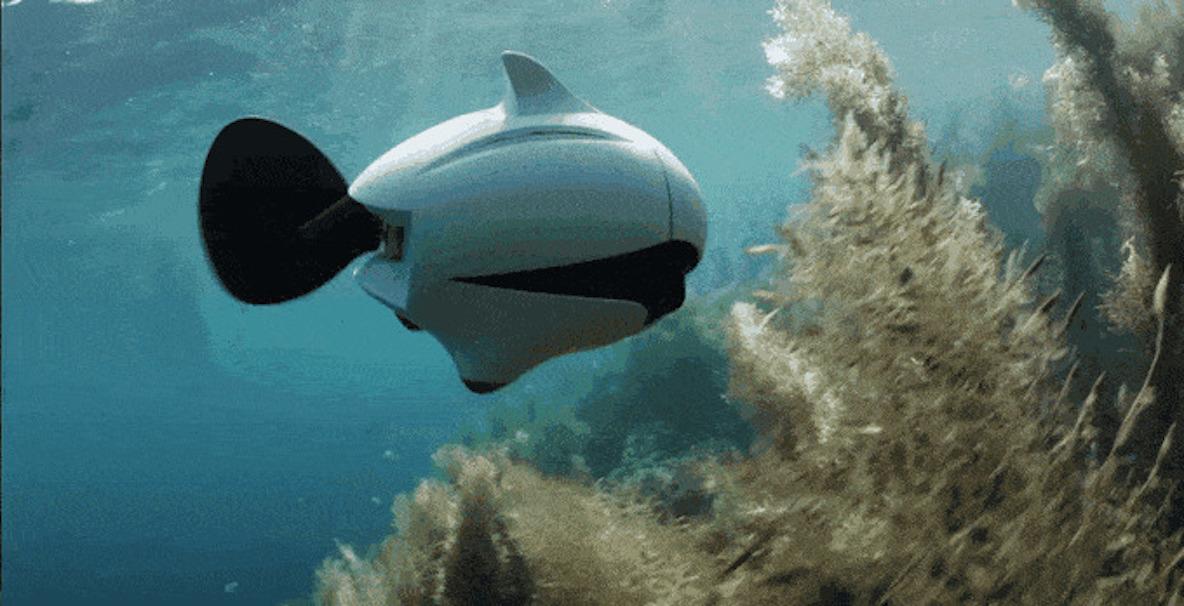 本物の魚のようなビジュアル。水中で使用できるドローンが登場