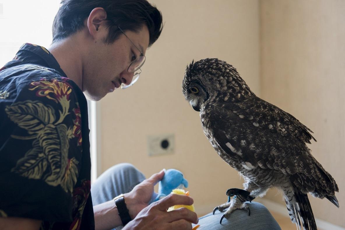WEBデザイナーの江藤勇也さんと、フクロウの暮らしを覗いてみた