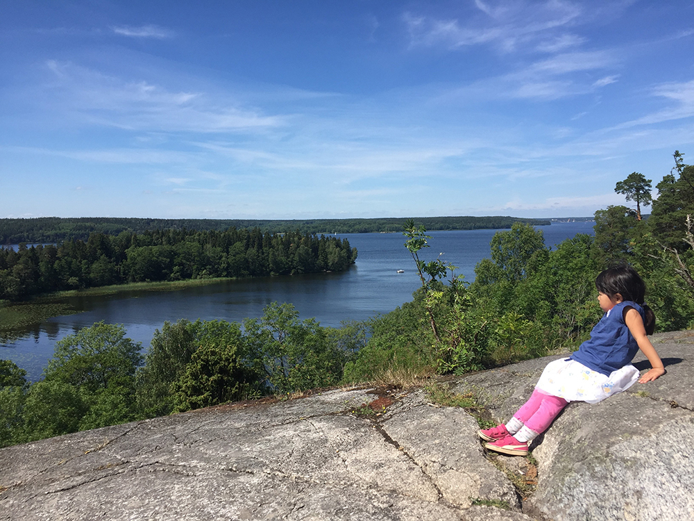 スウェーデンの渓谷と自然